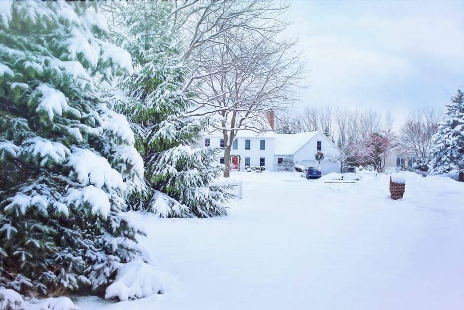 本格的な冬が来る前に確認!春に向けてのお庭のお手入れ5つをご紹介!