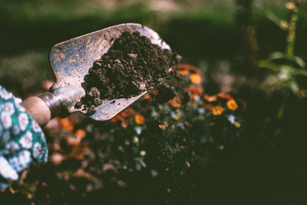 冬の間にやっておきたい庭仕事!花壇のお手入れ5つのポイントをご紹介