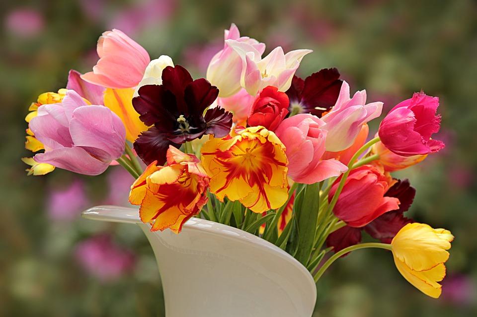 花を元気に! 水あげ方法基本の5つをご紹介