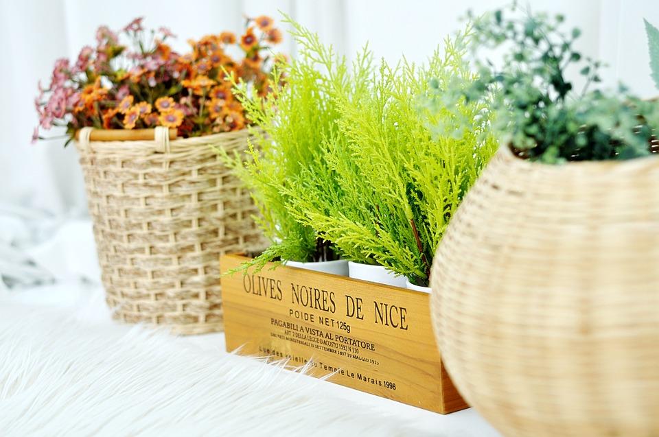 【初心者必見】鉢植えに使える基本用土の作り方と6種類の土をご紹介